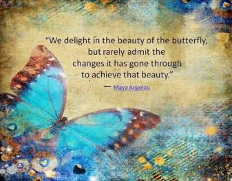 Maya Angelou beauty-of-the-butterfly